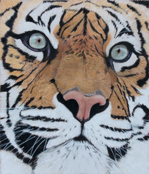 Sumatran Tiger Pastel