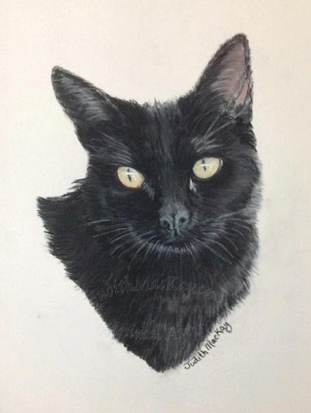 Saffie-Cat