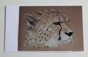 Contemplation-Cheetah(card)