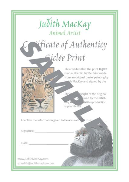 Ingwe gicle print judith mackay animal artist ingwe gicle print yadclub Gallery