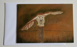 Just-Landed-Barn-Owl(card)
