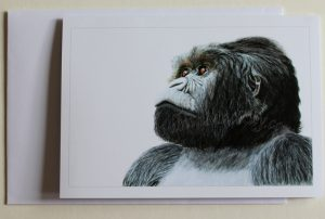 Magumu(card)