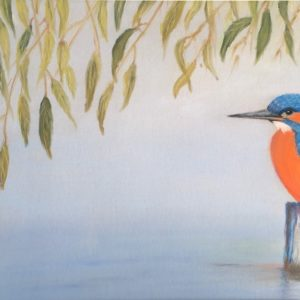 Kingfisher Rye Meads