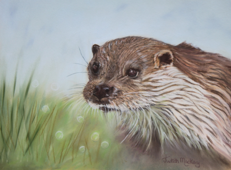 The British Otter SOLD